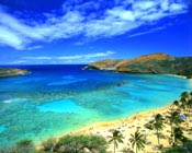 The Poker Grapevine – Hawaii Considering Legal Online Poker